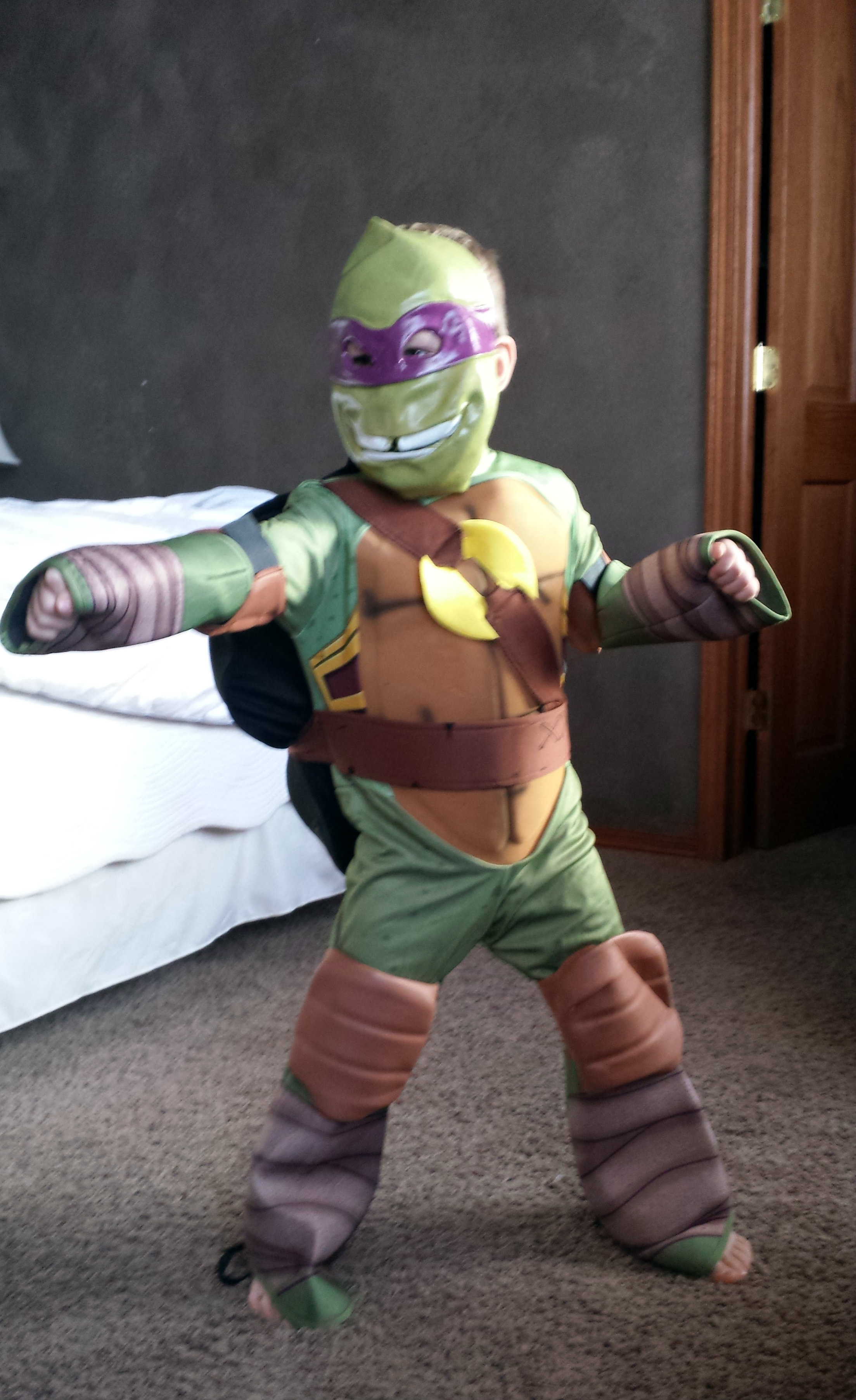 Anytime Costumes Teenage Mutant Ninja Turtles Costume