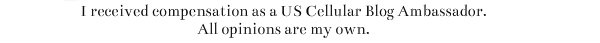 US Cellular Disclosure